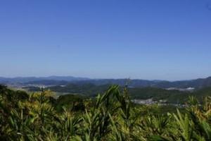 展望台への道路からの眺望