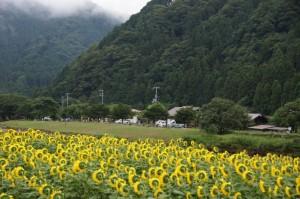 長林キャンプ場 遠景