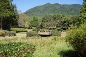 北播磨余暇村公園 花しょうぶ園
