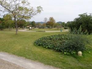 赤穂海浜公園キャンプ場全景