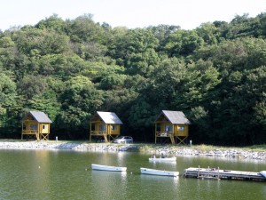 大池オートキャンプ場ログキャビン