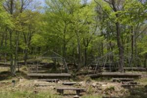ひろしま県民の森第3キャンプ場
