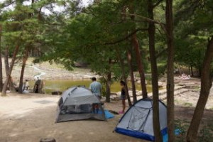 砂川公園キャンプ場