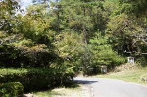 古法華自然公園 園内散策路