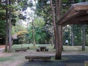 大滝山県民いこいの森キャンプ場ピクニック広場