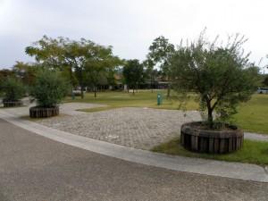 赤穂海浜公園キャンプ場フリーサイト