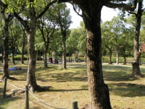 甲山森林公園 シンボルゾーン