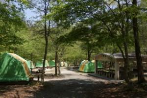 ひろしま県民の森第1キャンプ場常設テント