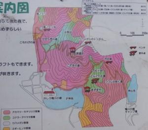 鴨川ひびきの森現地案内図