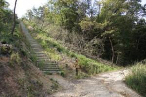 権現総合公園展望台への散策路