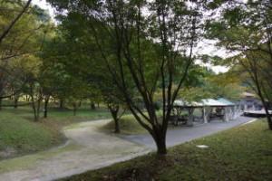 奥津川ラビンの里 キャンプ場