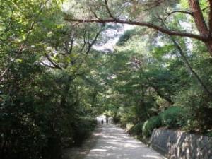 甲山森林公園 遊歩道