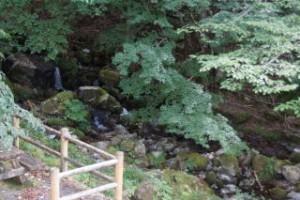 大茅キャンプ場 渓流脇デッキ