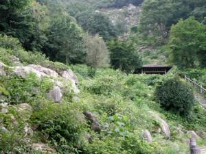 野呂山岩海遊歩道
