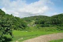としおじさんのキャンプ場周辺風景