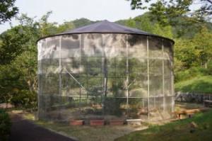 日時計の丘公園ギフチョウドーム