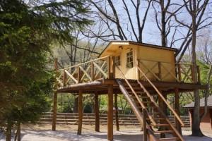 大鬼谷キャンプ場ツリーハウス