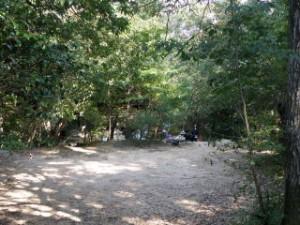 甲山キャンプ場 ファミリーサイト