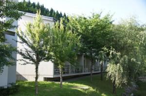 東山温泉メイプルプラザ宿泊施設