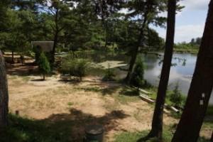 藤波池畔キャンプサイト