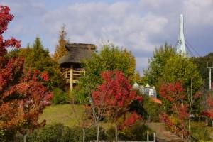 かさおか古代の丘スポーツ公園 (3)