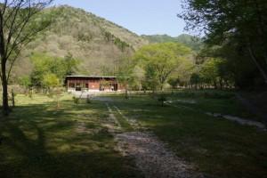 大鬼谷キャンプ場Bサイト芝生サイト