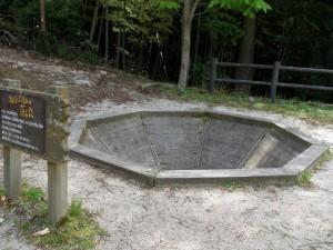トムソーヤ冒険村 落とし穴