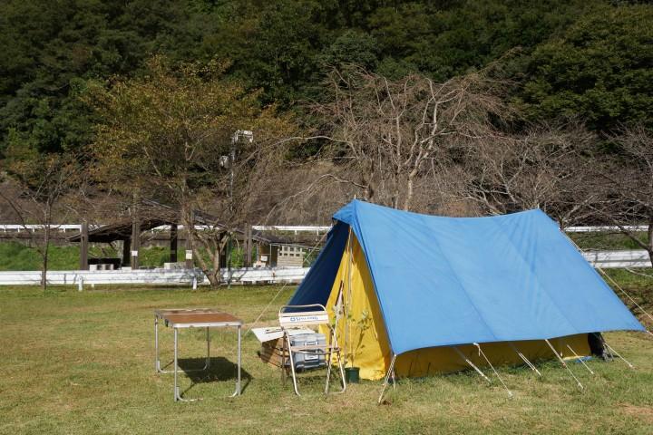 知明湖キャンプ場  テントサイト (2)