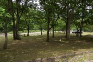 土師ダムファミリーキャンプ場 キャンプサイト