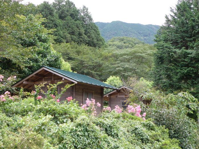 柏原渓谷キャンプ村