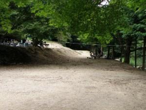 柏原渓谷キャンプ場 テントサイト