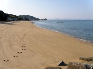 「瀬戸内東予」シーサイドキャンプ場 桜井海岸