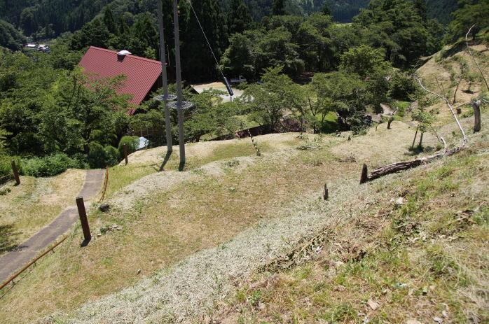 天滝公園キャンプ場