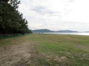 慶野松原ビーチ
