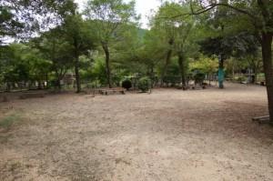日ヶ奥渓谷キャンプ場 オートサイト