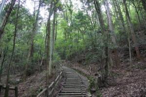 感状山への遊歩道