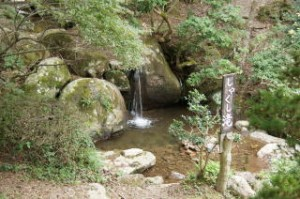 丹波猪村 しゃくし滝