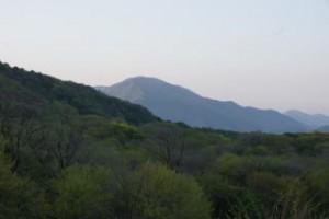 早朝の吾妻山