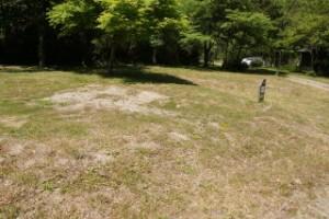 高幡森林浴の森キャンプ場