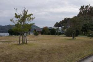 陸奥キャンプ場 フリーサイト