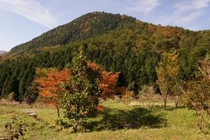 新見美しい森 剣山