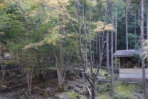 福知渓谷キャンプ場 (2)