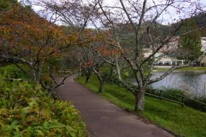 ユニトピアささやま 桜公園