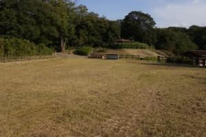 東条健康の森 テントサイト (2)