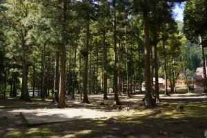 くるみの里キャンプ場 テントサイト