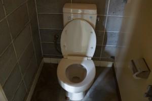 畔田キャンプ場 トイレ (2)