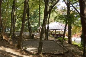 大川山キャンプ場 テントサイト