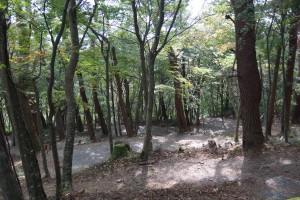 大川山キャンプ場 バンガロー