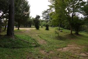 鴨池キャンプ場 テントサイト (7)