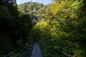 原不動滝 かえで橋